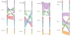 genome rearrangements