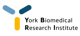 YBRI_logo-08